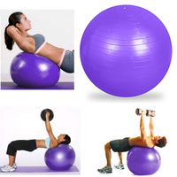 Fitness Exercise and Stability Ball with Hand Air Pump, Purple