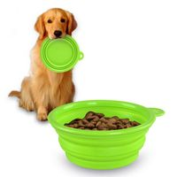 Collapsible Pet Feeding Bowl, Green