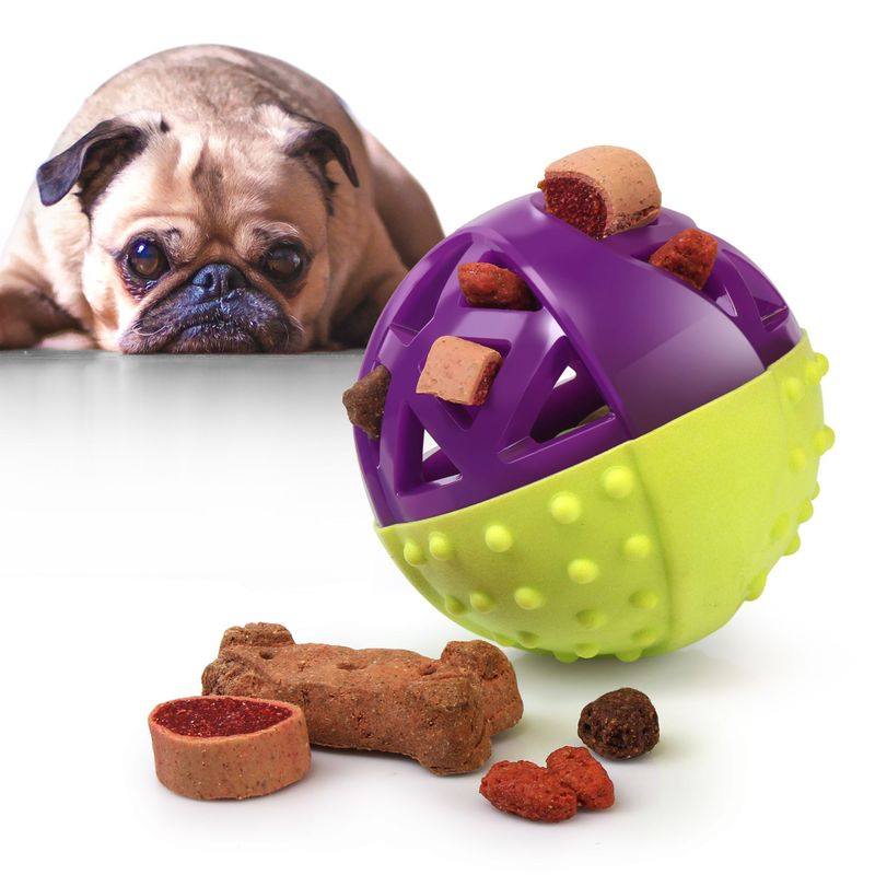 Green-Purple-Pet-Dog-Squeaking-Chew-Tooth-Cleaning-Toys-For-Small-Dog-Puppies thumbnail 2
